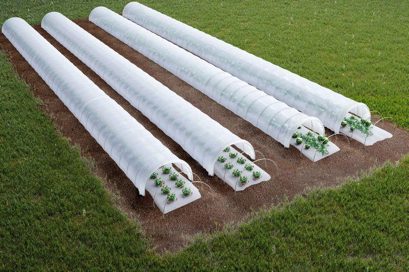 Укрытие туннелей на полях с использованием долговечных стеклопластиковых дуг